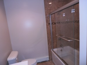 Bathtub with Glass Doors